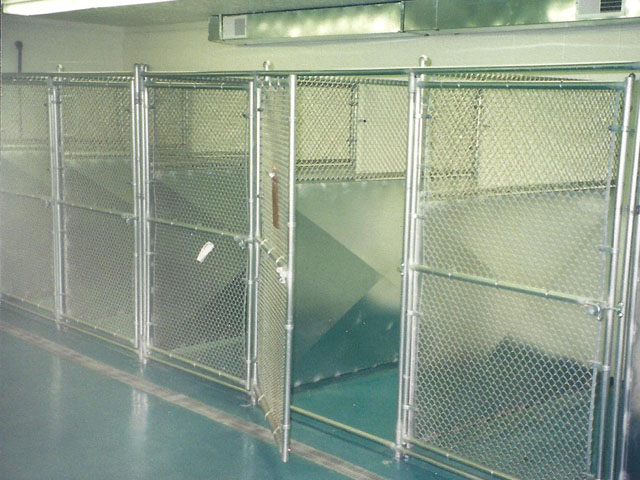 Interior Chain Link Dog Kennel