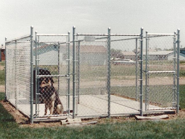 Elyria Dog Kennel