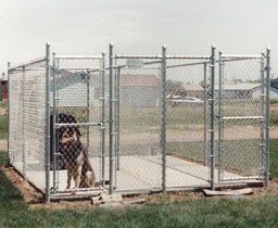 Industrial Chain Link Dog Kennel