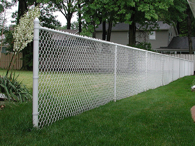 White vinyl coated chain link fence by elyria