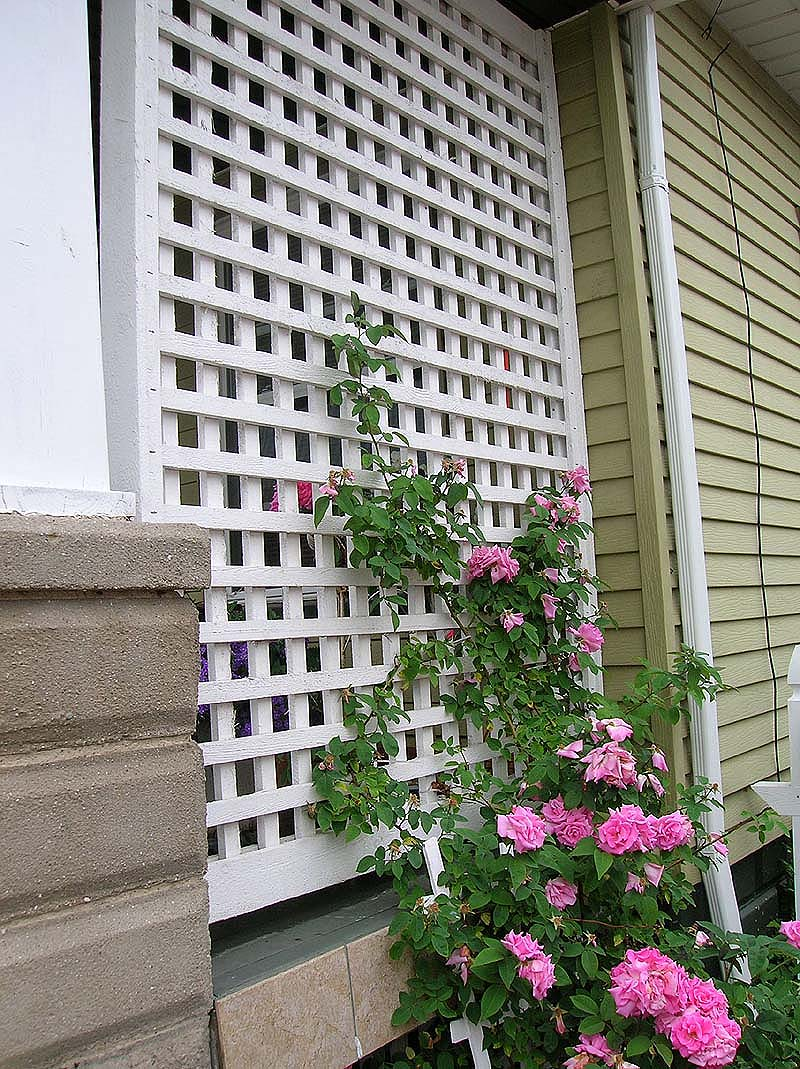 Wood Square Lattice Vine Porch Trellis By Elyria Fence