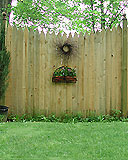 privacy scalloped white cedar wooden picket fence by elyria fence
