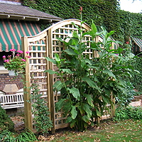 garden arch square lattice vine trellis by elyria fence